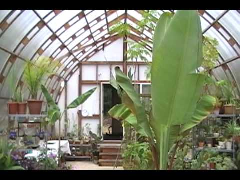Gothic Arch Wood Greenhouse
