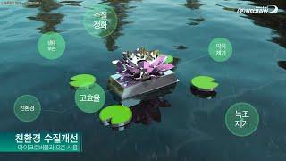 녹조 제거! 수질 개선! 수질을 관리해주는 똑똑한 스마트 기술, SWIQ 플랫폼 (Smart system removes algae and improves water quality)