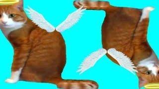 Тварь божья 4 / Скетч / Смешное видео для детей /  Видео для детей / Video for kids