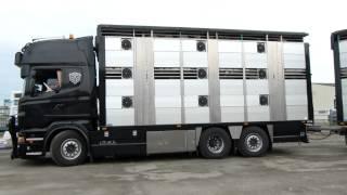 Scania R560 V8 BOVI 2000