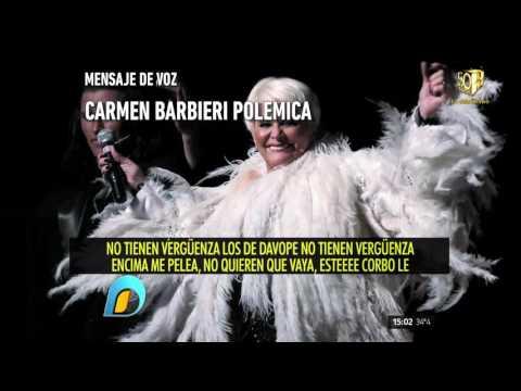 Carmen Barbieri tildó de grasa la cartelera de Pedro Alfonso
