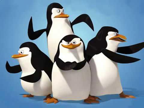 Виды и жызнь пингвинов презентацыя для 7 класа