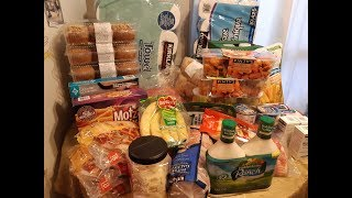 COSTCO HAUL #11 - GIANT $360 MONTHLY HAUL   THE DAILY DEE & MYSTERIES