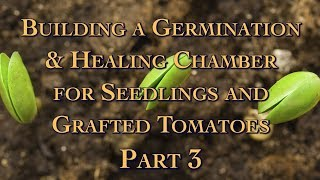 Building a Germination & Healing Chamber for Seedlings and Grafted Tomatoes Part 3