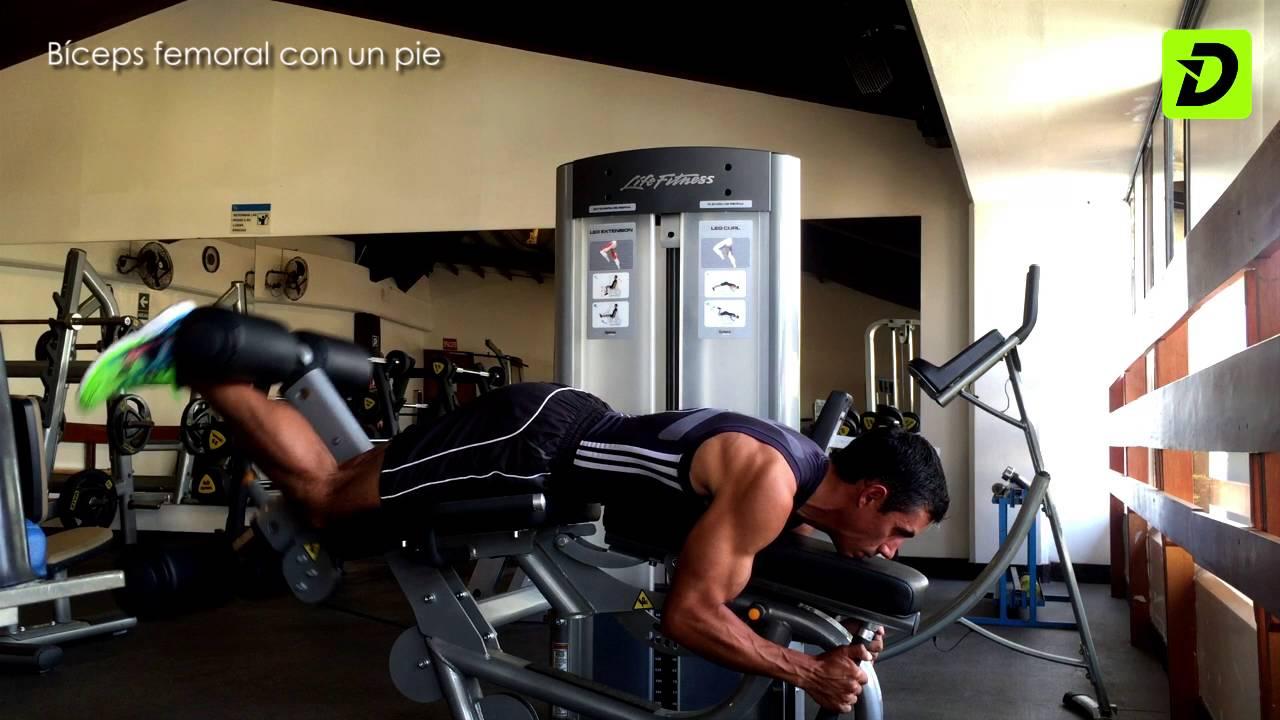 biceps femoral de pie