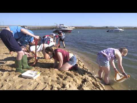 Marine Biology students field course to the Algarve, Portuga