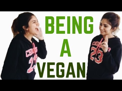 BEING A VEGAN: EXPECTATION VS REALITY