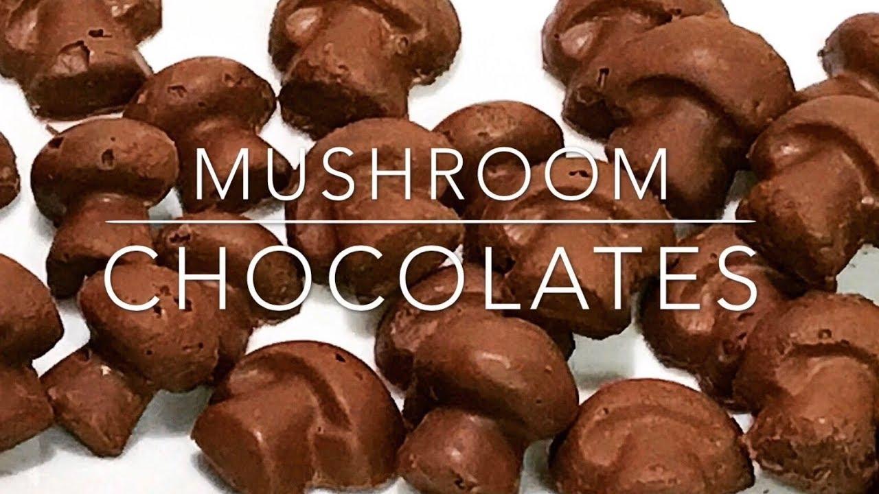 Magic Mushroom Chocolates - YouTube