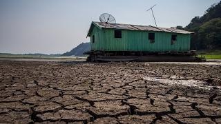Бразильцы страдают из-за засухи на северо-востоке страны (новости)