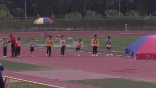 Publication Date: 2017-03-28 | Video Title: 佐敦道官立小學16-17年度運動會 BOYS P.3&4 6