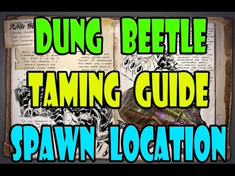 ARK: Survival Evolved - Dung Beetle Taming GUIDE - Spawn Location - TAME GUIDE - Users Guide