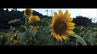 Filmic pro LG G4