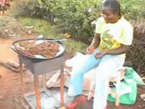 Savourer un delice au Cameroun: les Termites - Enjoying a Unique Delicacy in Cameroon: Termites