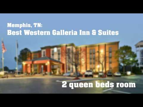 Memphis: Best Western Galleria Inn & Suites