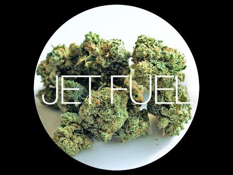 Jet Fuel Strain Review
