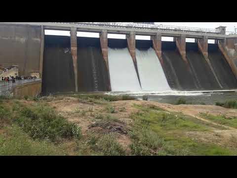 Vaigai dam water open live video