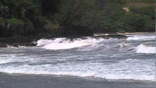 "Video Ryan Starr ""Surviving Paradise"" 10th day of 16 backpacking of Kauai Hawaii download MP3, 3GP, MP4, WEBM, AVI, FLV November 2017"