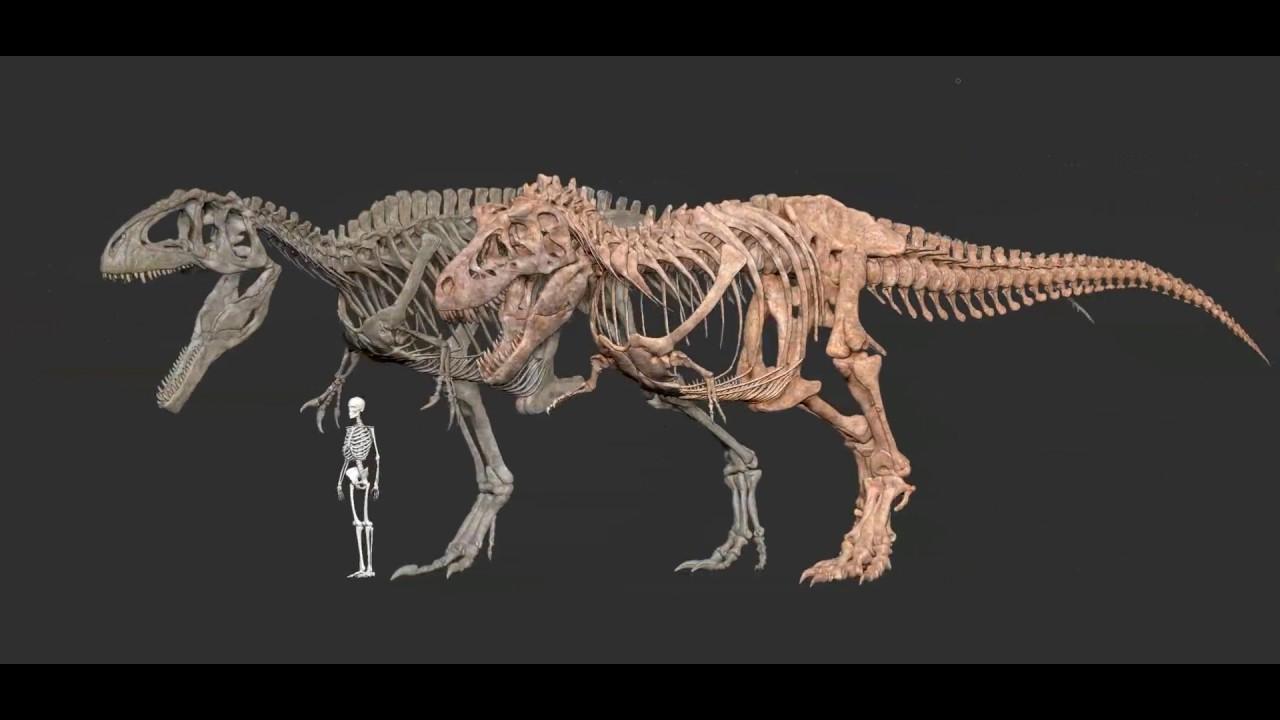 G Rex Vs Vastatosaurus Rex