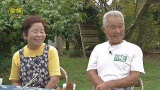 「入田俊幸・和子さん ご夫妻」 金婚ご夫妻が登場!『金婚さんいらっしゃ~い』