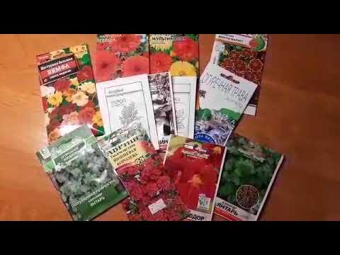 Цветы от вредителей в огороде  и в саду