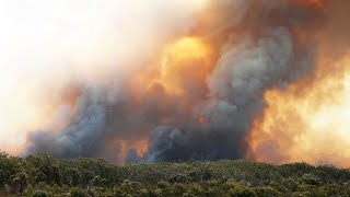 Three dead as fires bring 'hell on Earth' to NSW
