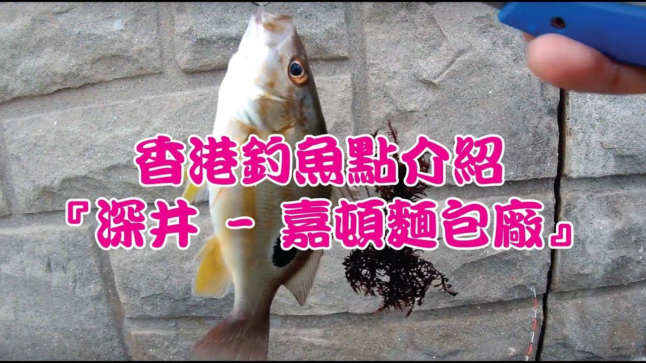【香港釣魚點】深井--嘉頓麵包廠釣點介紹 - YouTube