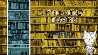 Книжные полки Часть1 || Кот-помощник || Гарри Поттер,Эрагон,Зильбер, Лунные Хроники