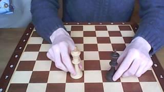 Шахматы для начинающих : Урок 1