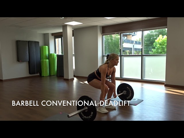 Barbell Conventional Deadlift