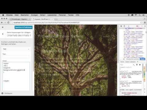 WordPress-Themes entwickeln und gestalten: Themes anpassen mit Widgets