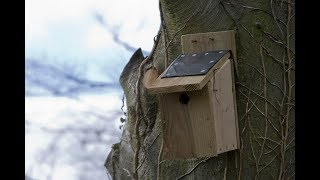 The Wildlife Garden Project - How To Make A Bird Box