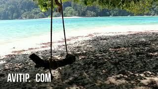 素林群島1日遊|泰國|價格|評論