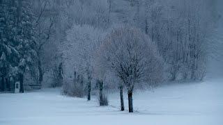 Schnee Ruhe