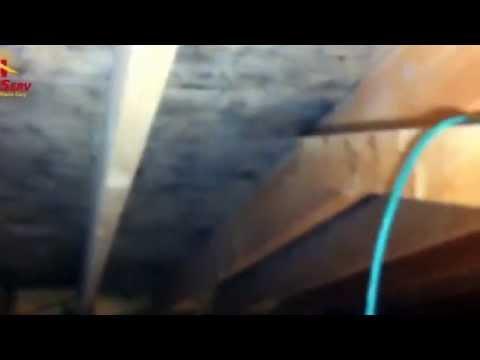 HomeServ - Attic Mold Removal