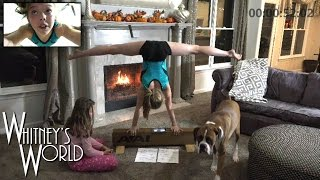 World Record Handstand | Story Time with Whitney Bjerken