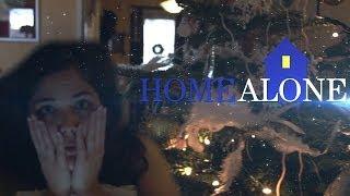 home alone fanny a rat l avion