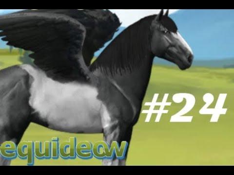 Et Equideow! #24 Le palais des glaces
