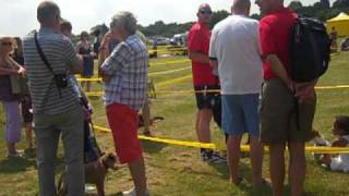 Dogs Trust Evesham: Open Day 2010 (part1)