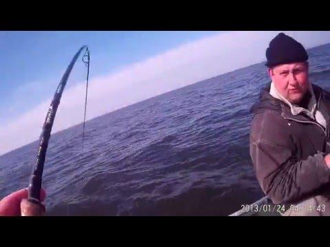 морская рыбалка в калининграде на треску