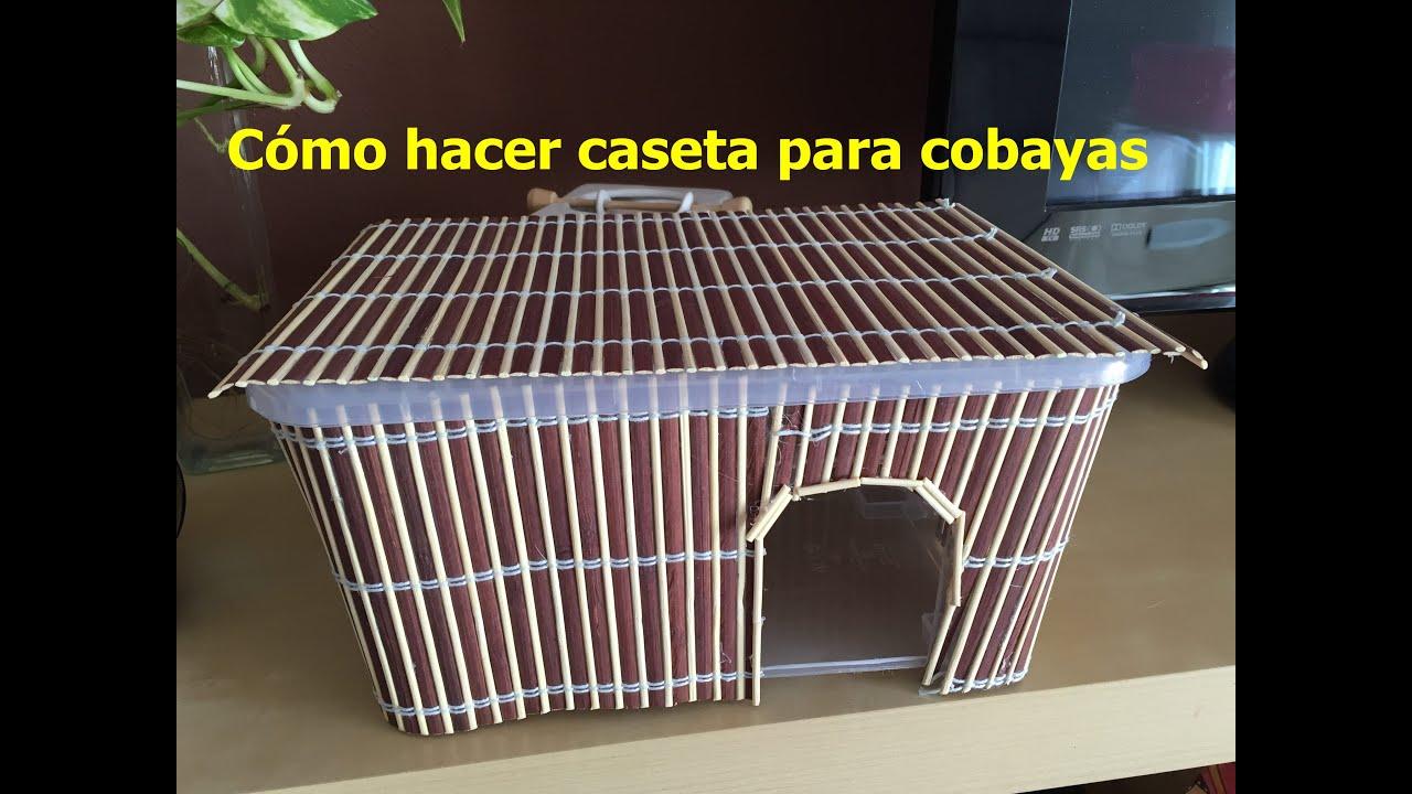 C mo hacer una caseta para cobayas youtube - Hacer una cama de madera ...