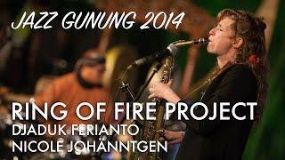 vuclip Djaduk Ferianto Ring of Fire Project ft. Nicole Johänntgen Live at Jazz Gunung 2014