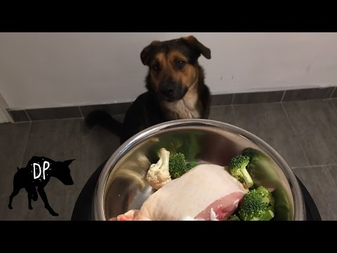 Raw Chicken Thighs, Broccoli, and Carrots | Raw Feeding Dogs