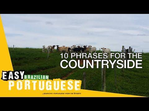 Tiếng Bồ Đào Nha bài 19