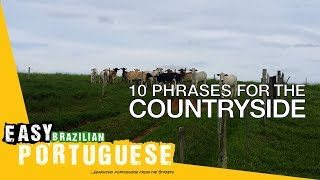 10 phrases for visiting the countryside | Easy Brazilian Portuguese Basic Phrases 18