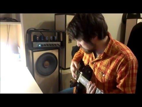 Гитарный усилитель на основе схемы  Mesa Boogie Dual Rectifier(red Channel). 5 ватт.
