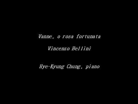 Vanne, o rosa fortunata (V. Bellini) - Accompaniment