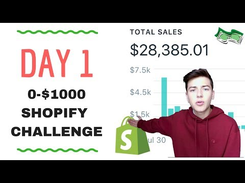 🔥 DAY 1 | SHOPIFY $0-$1000 CHALLENGE | STEP BY STEP 🔥