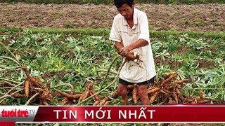Nông dân thu hoạch chạy lũ