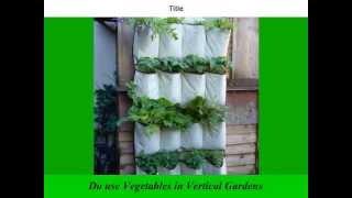Vertical Gardening How To | Vertical Gardening | Diy Vertical Gardening | Ideas | How To