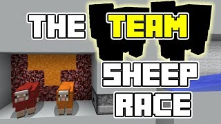 8 teams of 2 sheep race against each other! ====================== ...